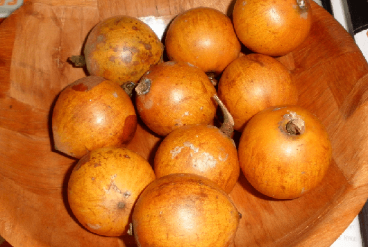 African Star Apple (Agbalumo)