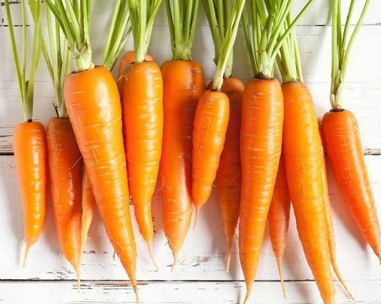 Health and economic benefits of carrot