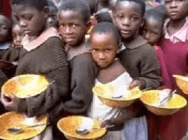 WHO Calls for Robust Investment in Nutrition to Save 3.7 Million Lives