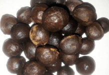 How Walnut Lowers Cholesterol Level, Boosts Fertility