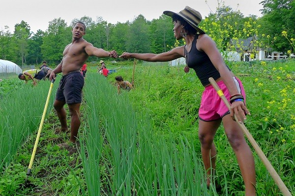 Researcher Links Urban Agricultural Practices to Health Problems