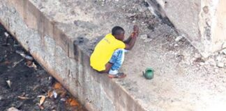 Only 38 Out of Nigeria's 774 LGAs Are Open Defecation Free — Minister