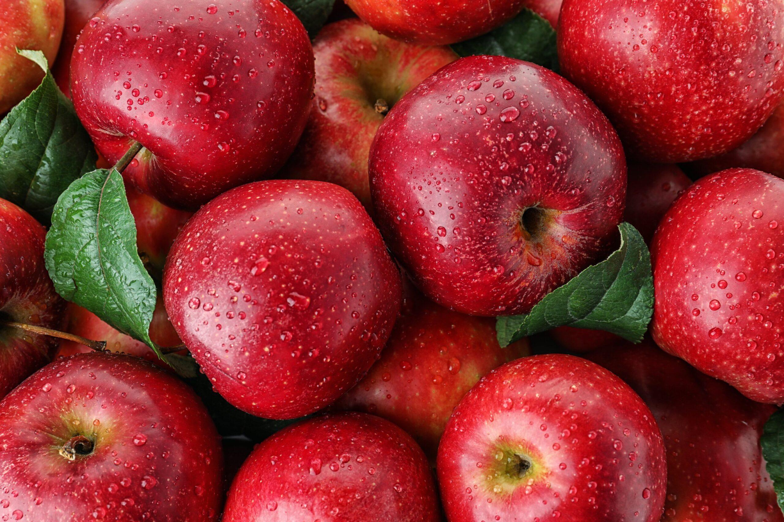 Researchers Find Apples Boost Brain Health